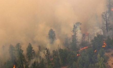 Health Risks from Wildfire Smoke May Be Underestimated
