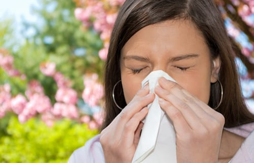 Nasal Filter Holds Potential for Allergy Sufferers
