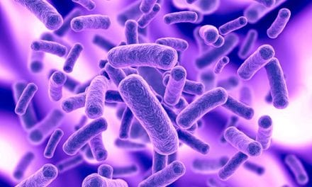 Cystic Fibrosis Lungs Have Unique Bacterial Profile