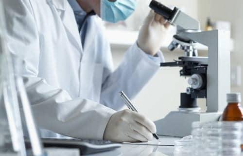 NIH Funds Mount Sinai Influenza Research