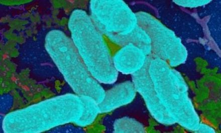 Pneumonia in Kids: Antibiotic Guideline Adherence Rising
