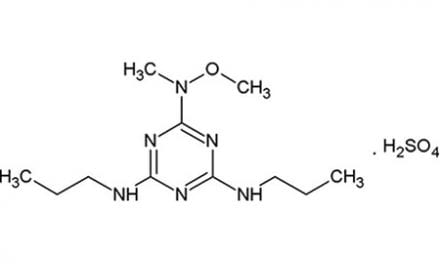 Respiratory Stimulant Reverses, Prevents Opioid-induced Adverse Events without Compromising Pain Relief