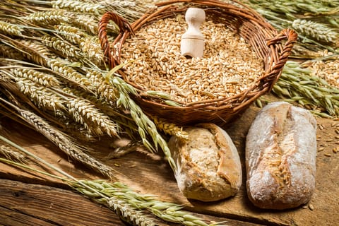 Whole Grain Diet Reduces Risk of Death from Respiratory Disease, Diabetes