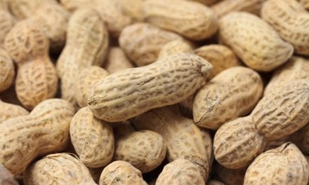 Xolair Granted Breakthrough Therapy Designation for Food Allergies