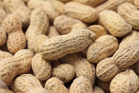 Peanut-Allergy Immunotherapy 'Protection Not a Cure'