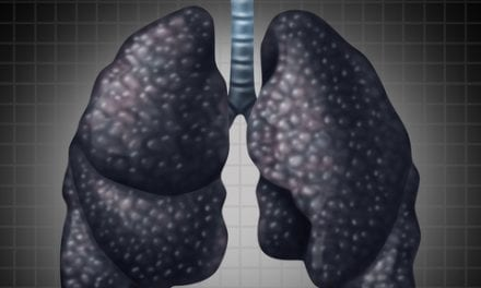 Increased Protein Turnover Contributes to Development of Pulmonary Fibrosis