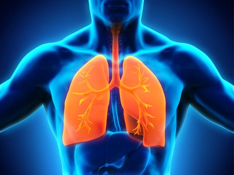 Poverty May Be Causing Bronchiectasis, Other Respiratory Diseases in New Zealand