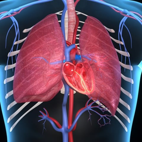 New Data Show Need for Improved Monitoring for Pulmonary Hypertension Following Pulmonary Embolism