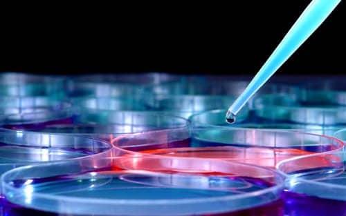 Treatment Breakthrough for Hereditary Emphysema