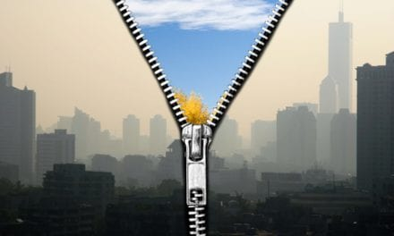 Meeting Global Air Quality Guidelines Could Prevent 2.1 Million Deaths Per Year