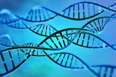 Pneumonia Found to Harm DNA in Lung Cells