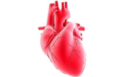 Heart Failure Patients with Central Sleep Apnea at Higher Risk for Serious Complications