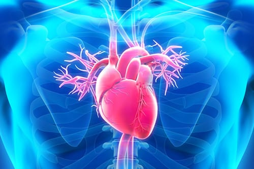 Study: Beta Blockers Have Positive Effect in PAH