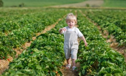 Farm Dust Exposure Keeps Kids Allergy-Free Later in Life
