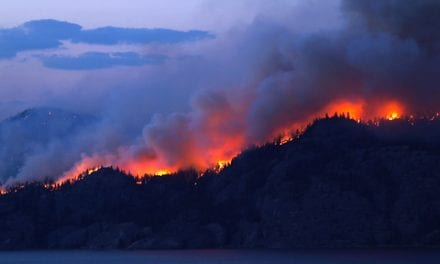 Smoke from Forest Fires Aggravates the Respiratory Health of Children