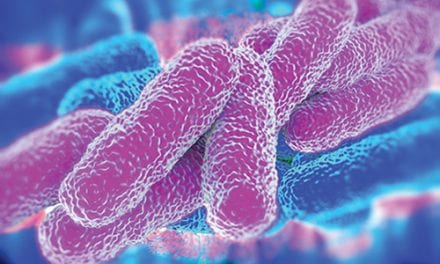 Pneumococcus Spreads by Using Our Immune System