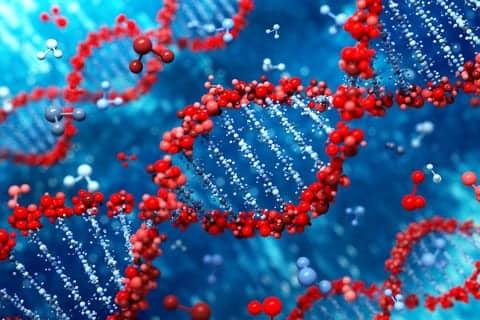 UK Biobank Study Identifies Genetic Factors That Increase Likelihood of Smoking
