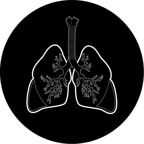 Black Nanoparticulate in Smokers' Lungs May Start Emphysema