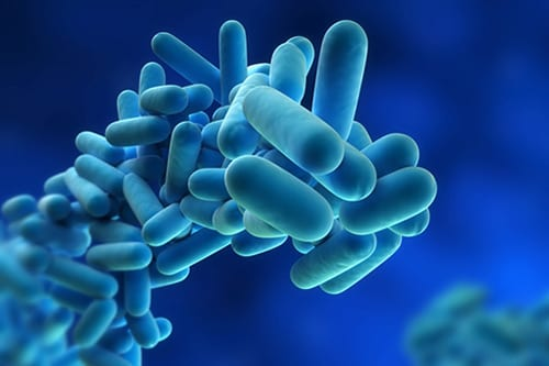 Inhaled Steroids May Increase Risk of Nontuberculous Mycobacteria Lung Disease