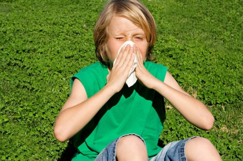 Experts Say Higher Levels of Carbon Dioxide Cause Seasonal Allergies to Become Worse