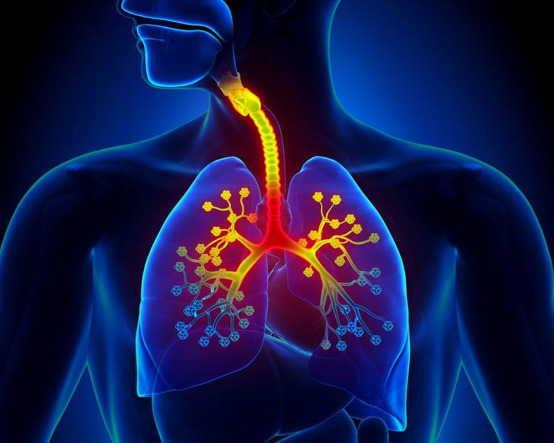 Bronchiolitis in Early Childhood May Lead to Increased Asthma Risk