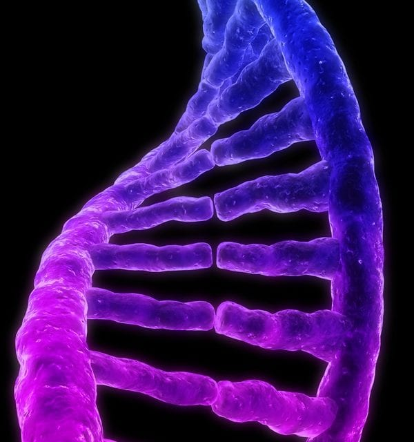 Cystic Fibrosis Study Focuses on CFTR Gene Structure, Expression