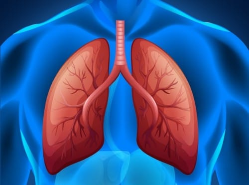 Low-Dose CT Screening Can Reduce Lung Cancer Mortality by 20% in High-risk Patients