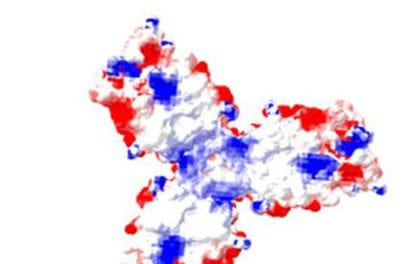 Genetic Variation Linked to Respiratory Disease