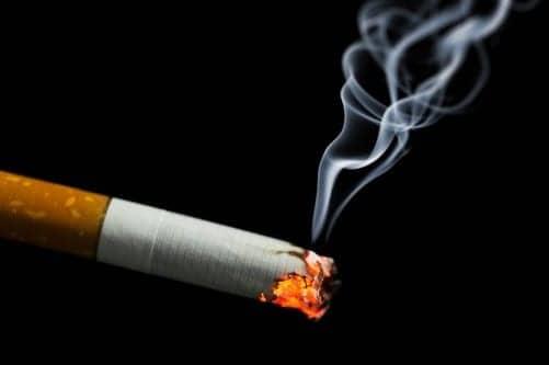 Tiny Biotech Firm Offers Big Tobacco Model to Curb its Nicotine Habit