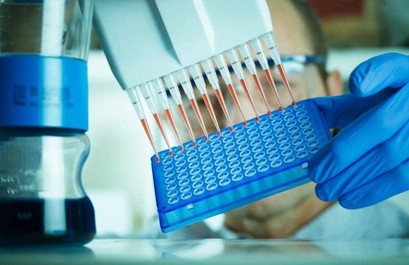 Caltech Biologists Identify Gene That Helps Regulate Sleep