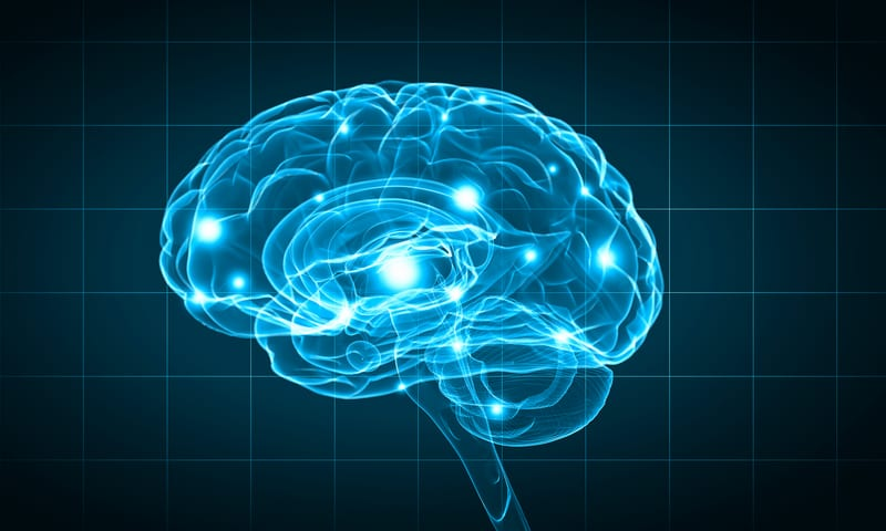 COPD Linked to Structural Changes in Brain Regions Regulating Fear, Breathlessness