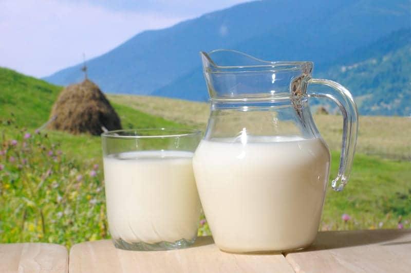 Consumption of Raw Milk Decreased Child Asthma Risk