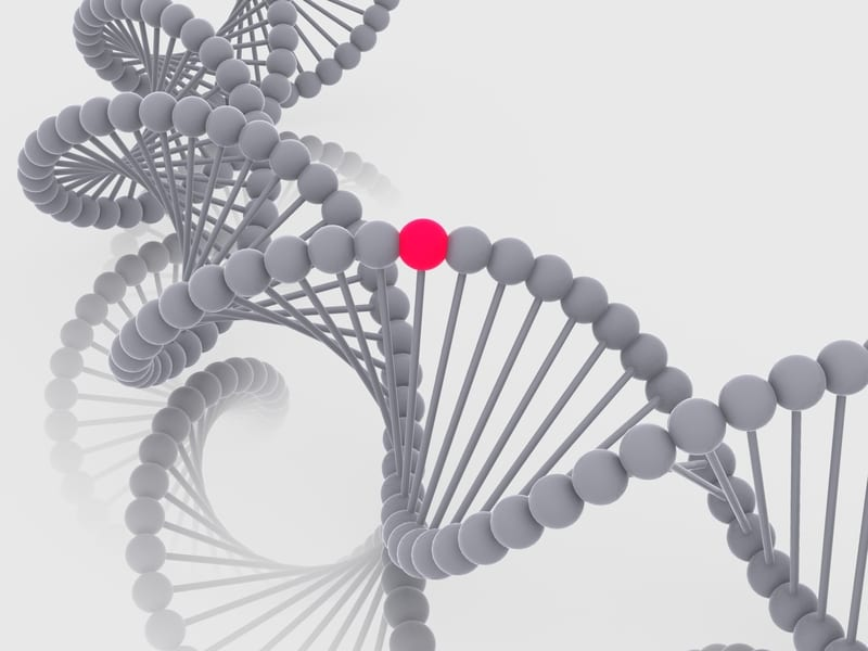 Nit1 Gene May Contribute to Lung Cancer Development