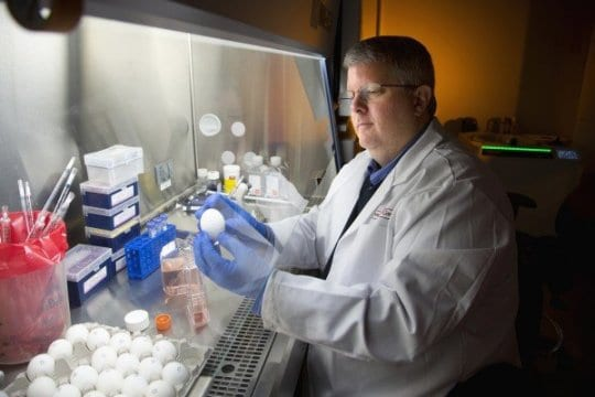 New Flu Vaccine Protects Against Multiple Strains of H1N1