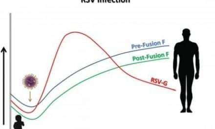 Characterization of Antibody Response to RSV Shows How Virus Immunity Develops