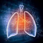 Study Showing How Bacteria Get Into Lungs Could Help Disease Research