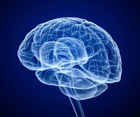 Sleep Problems Tied to Decreased Brain Volume