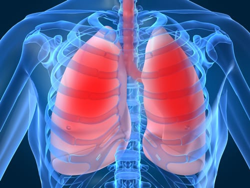 Predicting Survival in ALS Patients From Respiratory Muscle Strength
