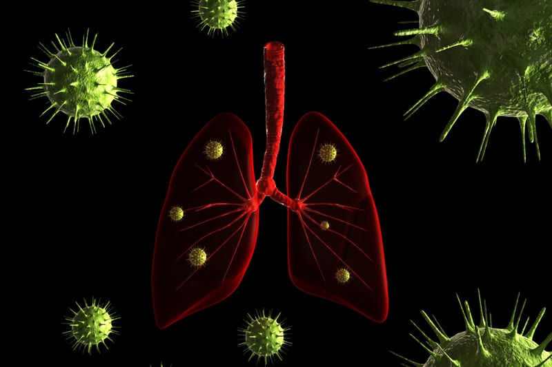 How Bacteria Evolve, Adapt to Survive in Lungs of CF Patients