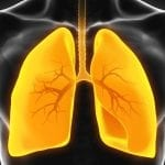COVID-19 'Entry Point' Enzyme in COPD Patients Lungs
