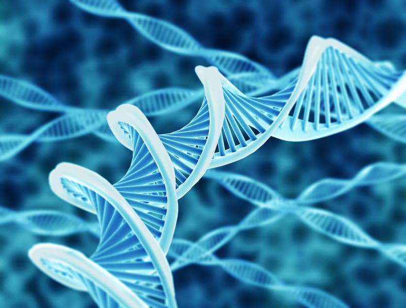 New Genetic Markers for COPD Discovered
