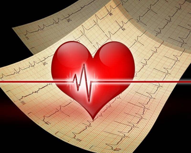 Public Health Researchers Develop Model to Predict Sudden Cardiac Death