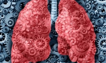 Drug Selinexor Shown to Kill Lung Cancer Cells, Shrink Tumors