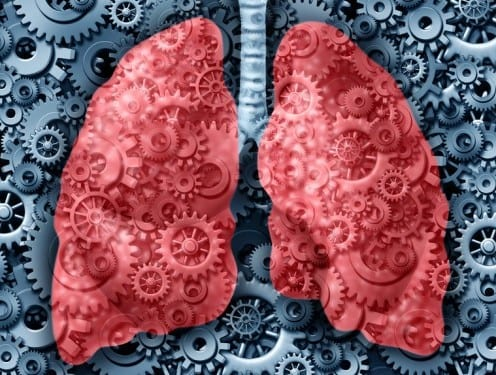 Drug Selinexor Shown to Kill Lung Cancer Cells, Shrink Tumors