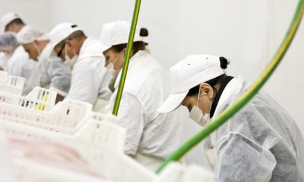 Food Flavorings Causing Respiratory Illness in Production Workers