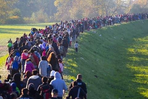 European Migrants at Increased Risk of Drug Resistant TB