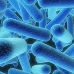 Oxygen, pH Levels May Affect Antibiotic Effectiveness in Cystic Fibrosis