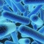 Decrease in Cystic Fibrosis LRTIs Due to P. Aeruginosa
