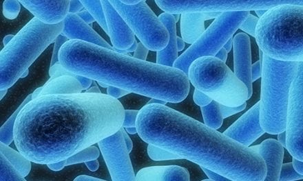 Understanding How Bacteria 'Talk' Could Hold Key for New CF Treatments
