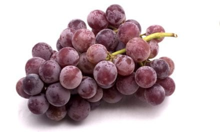 Grape Compound May One Day Treat COPD